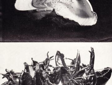 5 Egon Wrobel & Hedwig Bollhagen (Detail)