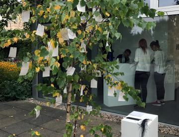 2 Pavillonvorplatz mit Wish Tree