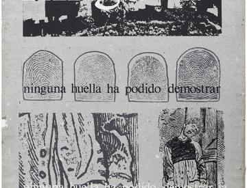 5 Eugenio Dittborn: Ninguna