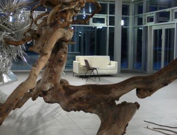 17 Tepidarium - Blick in die Ausstellung